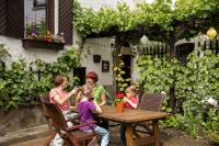 Tourismus-Elz-Koblenz-Wein