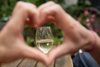 Wein-Wandern-Lahn-Fotografie